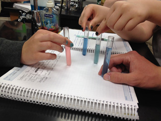 Students tested the samples with LaMotte water-testing TesTabs. These tests use chemicals that change color: pink-orange for nitrates and blue for phosphates.